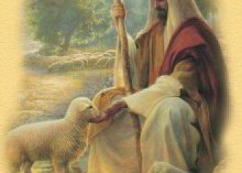 Niedziela Dobrego Pasterza – Tydzień modlitw o powołania do służby Bożej
