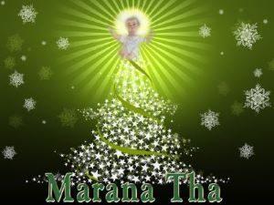marana — kopia kk